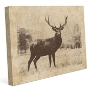 Click Wall Art 'Vintage Buck' Graphic Art on Wrapped Canvas; 11'' H x 14'' W x 1.5'' D
