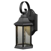 Hardware House 1-Light Outdoor Wall Lantern