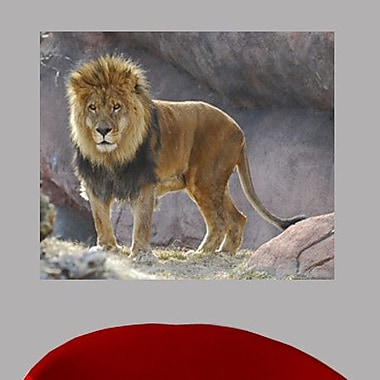Wallhogs King of the Jungle Glossy Wall Mural; 20'' H x 24'' W x 0.1'' D