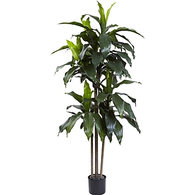 Nearly Natural Dracaena Plant in Planter