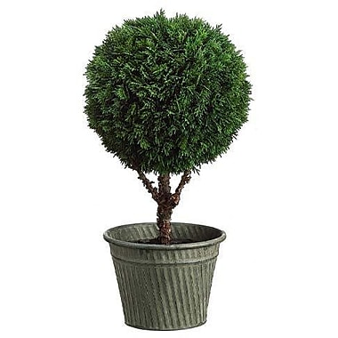 Tori Home Cedar Ball Round Tapered Topiary in Pot; 19.5''