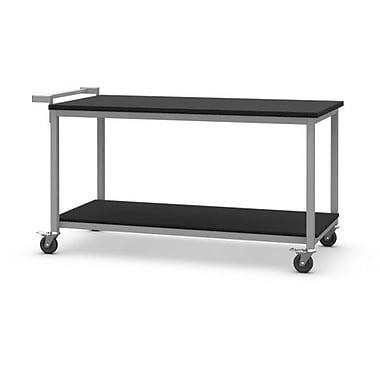 SteelSentry Chemical Resistant Laminate Laboratory Cart; 30'' H x 48'' W x 36'' D