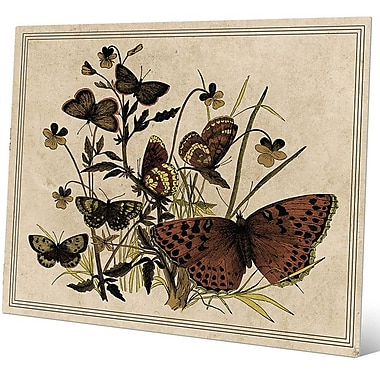 Click Wall Art '7 Butterfly and Clovers Drawing Paper' Graphic Art; 8'' H x 10'' W x 0.04'' D