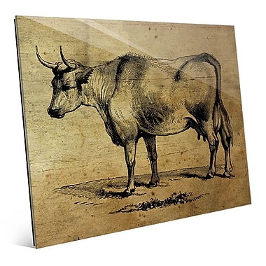 Click Wall Art 'Bull Ink Drawing Wood' Graphic Art; 16'' H x 20'' W x 1'' D