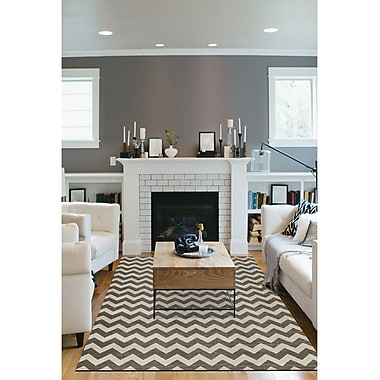 Ruggable Hand Woven Gray/White Indoor/Outdoor Area Rug