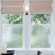 WallPops! Winter Garden Window Film