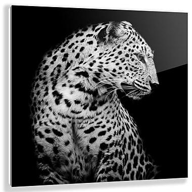Two Palms Art Bazaar 'Braam' Photographic Print on Plaque; 22'' H x 22'' W x 1'' D