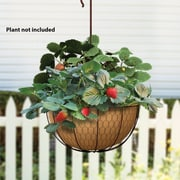 Panacea Products Metal Hanging Planter