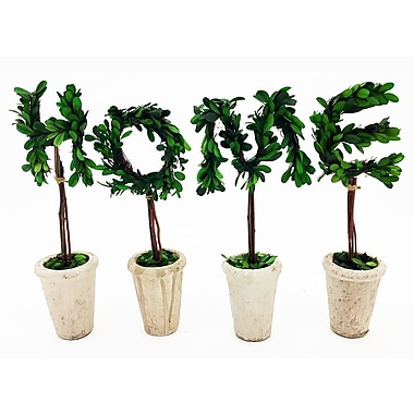 Vandue Corporation Modern Home Real Preserved Boxwood Monogram Letter E Tree in Pot