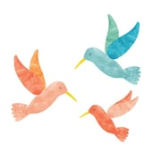 Eco Wall Decals 3 Piece Hummingbird Wall Decal Set; Coral/Blue