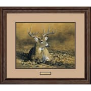 WildWings October Sun by Robert Hautman Framed Painting Print