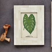 Creative Co-Op Palm and Fauna Picture Frame