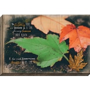 Carpentree Embellished Canvas 'To Everything There is a Season' Framed Graphic Art on Wrapped Canvas