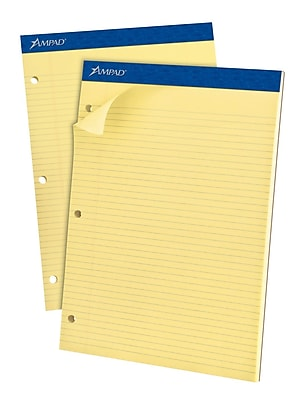 Ampad® 3-Hole Punch Dual Notepad, 8 1/2
