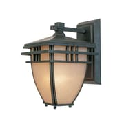 Designers Fountain Dayton Outdoor Wall Lantern; 16.5'' H x 10.75'' W
