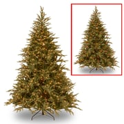 National Tree Co. Fraser 7.5' Green Artificial Christmas Tree w/ 1000 LED Multi Lights and Stand