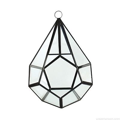 CYSExcel Glass Terrarium; 9'' H x 6'' W x 6'' D