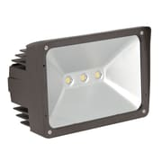 Luminance 50 watt Bronze LED Outdoor Flood Light (F7395-66)