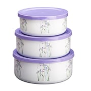 Corelle Shadow Iris 3 Container Food Storage Set