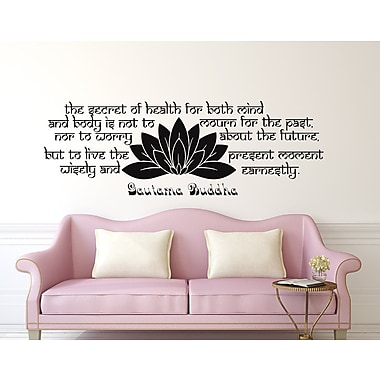Decal House The Secret of Health Wall Decal; Sky Blue
