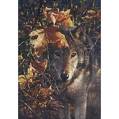 HadleyHouseCo 'Autumn Eyes' by Collin Bogle Photographic Print on Canvas
