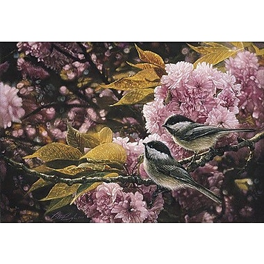 HadleyHouseCo 'Pretty in Pink' by Collin Bogle Photographic Print on Canvas