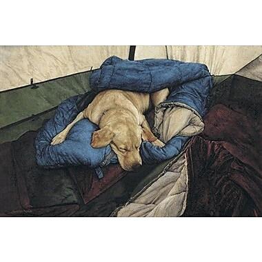 HadleyHouseCo 'Happy Camper' by Suellen Ross Painting Print