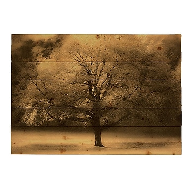 HadleyHouseCo 'Tree of Fall' by Hal Halli Graphic Art Plaque; 9'' H x 12'' W x 2'' D