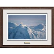 WildWings Top of the World by Jim Brandenburg Framed Photographic Print