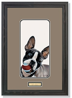 WildWings Lets Play Ball-Boston Terrier Puppy by Brett Longley Framed Painting Print