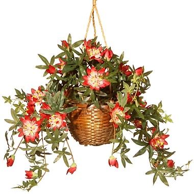 National Tree Co. Round Basket Planter