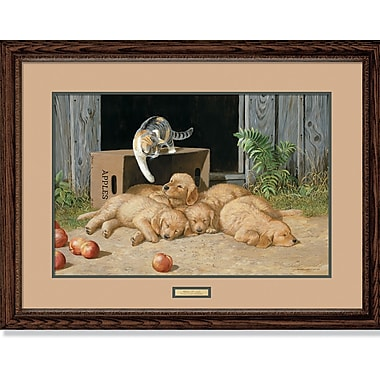 WildWings Wake Up Call by Persis Clayton Weirs Framed Painting Print