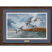 WildWings Bullets by David Maass Framed Painting Print