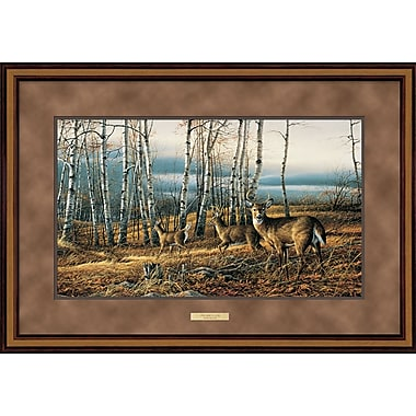 WildWings Birch Line by Terry Redlin Framed Painting Print