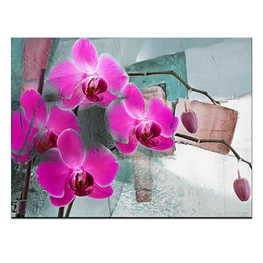 Ready2hangart 'Painted Petals XIII' Photographic Print on Wrapped Canvas; 20'' H x 30'' W x 1.5'' D