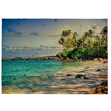 HadleyHouseCo 'Turtle Beach' by Kelly Wade Photographic Print Plaque; 18'' H x 24'' W x 1.5'' D