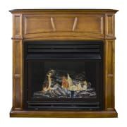Pleasant Hearth Dual Fuel Vent Free Gas Fireplace; Rich Heritage