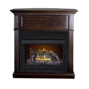 Pleasant Hearth Intermediate Vent-Free Dual Fuel Gas Fireplace