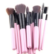 Zoe Ayla Cosmetics 12-Piece Luxe Edition Make-Up Brush Set