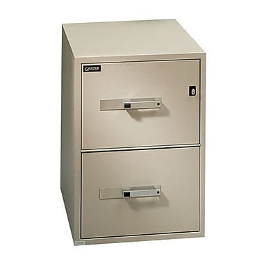 Gardex Classic 25 Fire-Resistant File, 2-Drawer, Vertical, Legal, Beige, 28H x 19 3/4W x 25D (GXGF-25-2-BE)