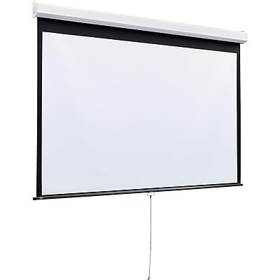 Draper® Luma 2 206010 Heavy-Duty Manual Projector Screen, 170