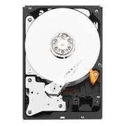 WD® Purple  NV WD6NPURX 6TB SATA 6 Gbps Internal Surveillance Hard Drive, Black