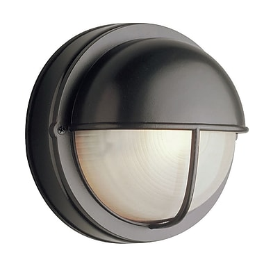 TransGlobe Lighting 1-Light Outdoor Flush Mount; Black