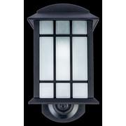 Jiawei Technology Maximus 1-Light Outdoor Wall Lantern
