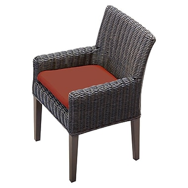 TK Classics Venice Dining Arm Chair w/ Cushion (Set of 2) (Set of 2); Terracotta