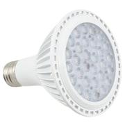 American Lighting LLC LED Light Bulb; 12W