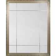 Mirror Image Home Paneled Mirror
