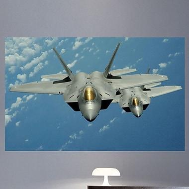 Wallhogs Lee ''F-22'' Glossy Wall Mural; 45.5'' H x 72'' W X 0.1'' D