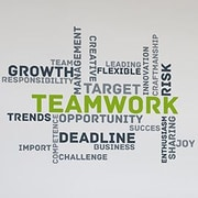 Paperflow Office Deco Transfer Teamwork Wall Decal