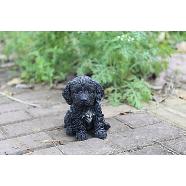 Hi-Line Gift – Statue Amis animaux, chiot Cockapoo, noir